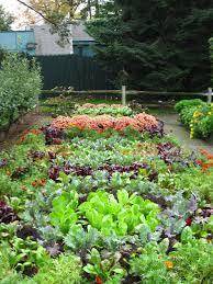 Fall Vegetable Garden Ideas Fall Vegetable Garden Garden Ideas Vegetable Garden
