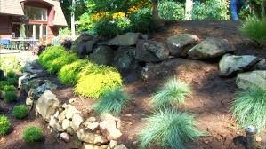 rock landscaping ideas plants gardens and rock landscaping