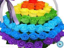 different color roses pretty flowers lessons tes teach