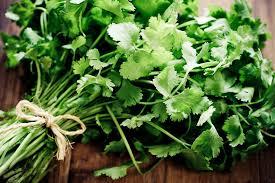 Easy Herbs To Grow Inside How To Grow Herbs Indoors On A Sunny Windowsill