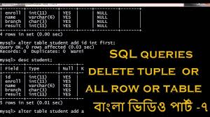 Delete All Rows From Table How To Delete Tuple All Row Table Using Sql In Tutorial