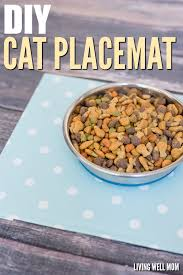simple diy cat placemat customizable easy