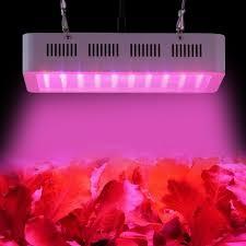 led grow light usa best full spectrum led grow light 300w for hydroponic greenhouse