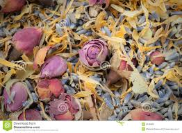 potpourri dried flower potpourri aromatherapy stock photo image 9158400
