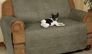2 Piece Stretch Sofa Slipcover Sofa Mesmerize Stretch Sofa Slipcovers Cheap Favored Stretch