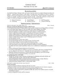 Financial Advisor Sample Resume by Hyperion Planning Resume Resume For Your Job Application