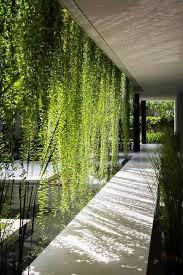 best 25 indoor courtyard ideas on pinterest atrium garden