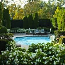 Backyard Swimming Pools by 97 Best Pool Privacy Ideas Images On Pinterest Pool Ideas