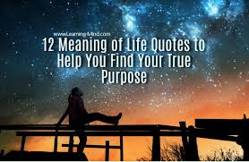 12 meaning of quotes to help you find your true purpose