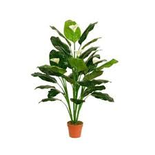 Peace Lily Plant Artificial Peace Lily Plant Wayfair