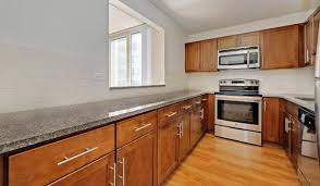 Cheap Kitchen Cabinets Chicago Hyde Park Tower Apartments At 5140 S Hyde Park Boulevard Chicago