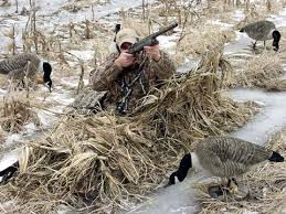 avery real grass and killer weed layout blind camo kits pro duck