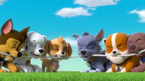 paw patrol gli amatissimi cuccioli coraggiosi presentano il loro