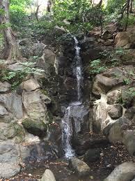 Ex Machina Waterfall Vegan Dollhouse Tokyo
