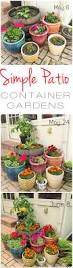 container herb gardening archives page 9 of 10 herb gardening