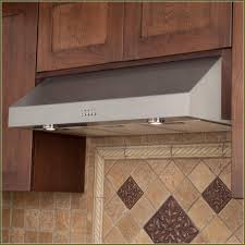 Home Kitchen Ventilation Design Interior Traditional Kitchen Design With Zephyr Hoods And Merola