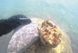 Michigan Snorkeling images Let 39 s get outdoors northern michigan snorkeling for stones jpg