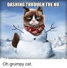 Grumpy Cat Snow Meme - 25 best memes about grumpy cat lyrics grumpy cat lyrics memes