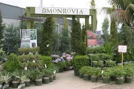 village nurseries landscaping centers u0026 wholesale nursery