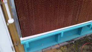 backyard aquaponics greenhouse cooling wall and exhaust fans
