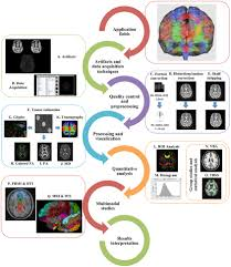 frontiers a hitchhiker u0027s guide to diffusion tensor imaging