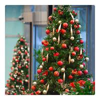 Commercial Christmas Decorations Scotland by Edinburgh U0026 East Scotland Branch Ambius Uk