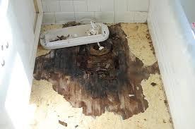 Water Under Bathroom Floor Greg The Plumber Greg Swan