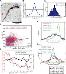 utsw cus map mapping the dynamics of transduction at cell cell junctions