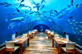 world u0027s first underwater restaurant celebrates tenth year