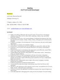Sharepoint Developer Cv Ui Developer Resume Physical Therapy Aide Resume