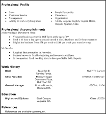 Sample Profile Resume by Professional Resume Objective Samplesprofessional Resume Objective