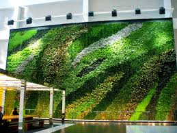 Interior Landscape Home Green Walls U0026 Green Roofs Plant Connection