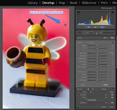 colouring your background in lightroom and adobe camera raw