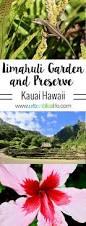 limahuli garden and preserve kauai hawaii island