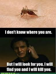 Mosquito Memes - suck while you still can silly mosquito jokes pinterest