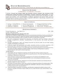 Executive Resume Sample by Resume Executive Summary Example Berathen Com