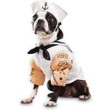 halloween spirit near me dog costumes funny costumes for dogs u0026 puppies petco