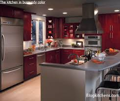the kitchen in burgundy color rules of designing and planning