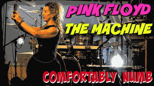 Comfortably Numb Cover Band Pink Floyd Tribute The Machine Performs