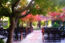 inexpensive wedding venues bay area affordable catering at bay area wedding venues panetta s elite