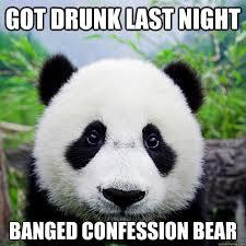 got drunk last night banged confession bear sad party panda
