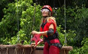 im a celebrity 2016 28th november mirror online