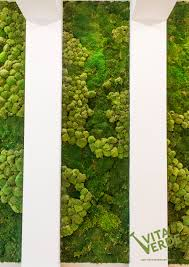 moss walls inside your home or office are easy to install and care