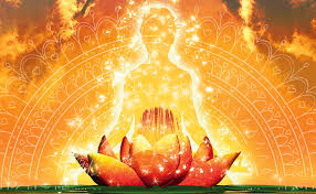 Divine Light From Aging To Sage Ing Soul Of Yoga