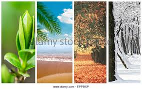 4 seasons collage stock photos u0026 4 seasons collage stock images