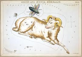 aries constellation wikipedia