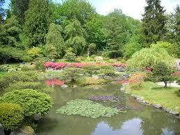 Botanical Gardens Seattle Scenery Picture Of Seattle Japanese Garden Seattle Tripadvisor