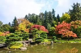 Botanical Gardens Seattle Seattle Washington Of Washington Botanic Gardens