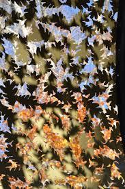 Tanger Family Bicentennial Garden Greensboro Daily Photo Parks