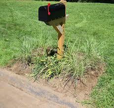 adding ornamental grass and mulch to mailbox area